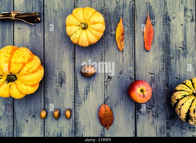 Colourful Autumnal Bacground - Stock Image