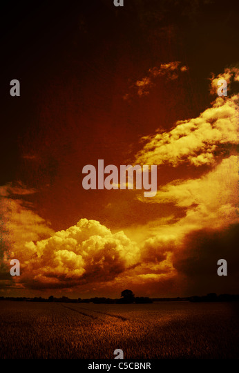Summer weather conditions with big clouds over flat farmland in Suffolk, England - Stock Image