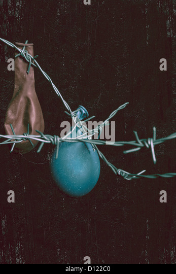 two balloons hanging on barbed wire - Stock Image