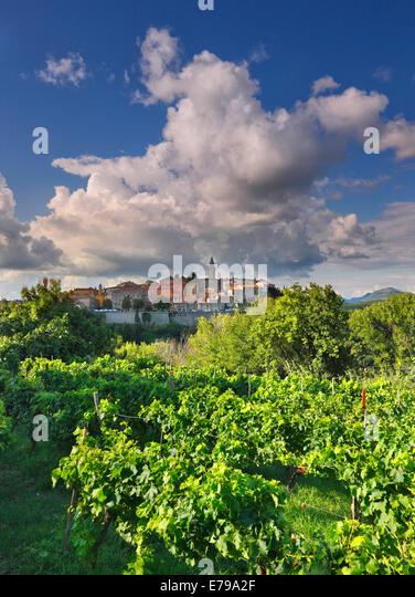 Labin, Istria -Croatia - Stock Image
