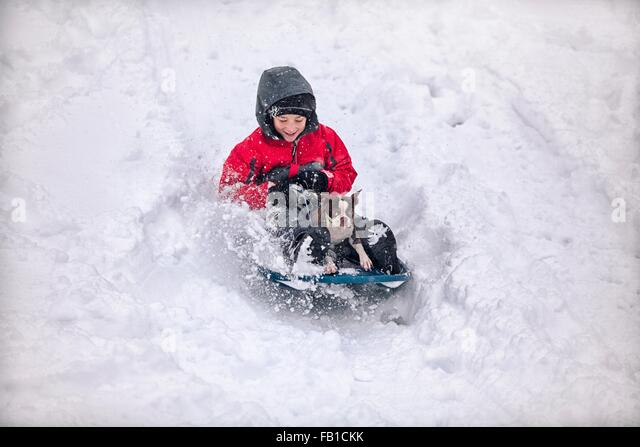Boy sledging with Boston terrier puppy on snow covered hill smiling - Stock Image