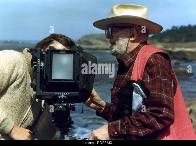 Ansel Adams working at Point Lobos, California during our 1982 Friends of Photography workshop. - Stock Image