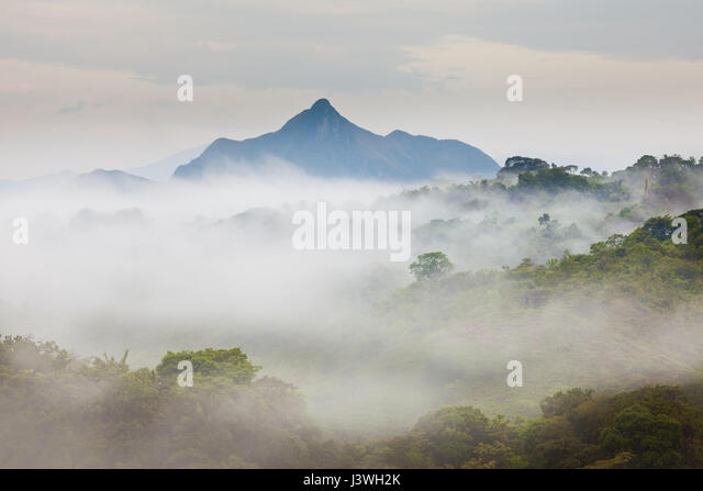 Misty morning in the interior of the Coclé province, Republic of Panama. - Stock-Bilder