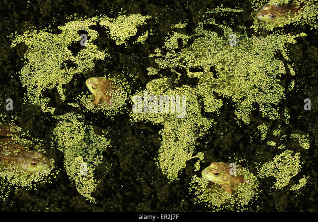 Global habitat concept and the world conservation of clean green environment with a duckweed or aquatic plant map - Stock Image