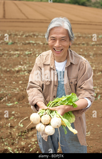 Senior man holding turnip on field - Stock Image