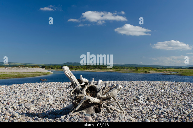 Driftwood beached at Spey Bay looking across estuary - Stock Image