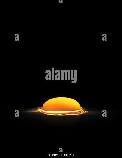 Raw egg yolk and albumen on black surface lit from below - Stock Image