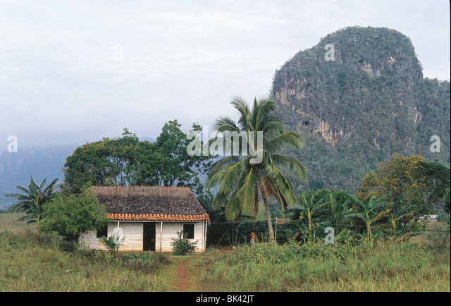 Farm house and the Pin Cushion Mountains in the Vinales Valley, Pinar del RÌo Province, Cuba - Stock Image