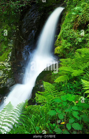 Waterfall, Glendalough, County Wicklow, Leinster, Republic of Ireland, Europe - Stock-Bilder