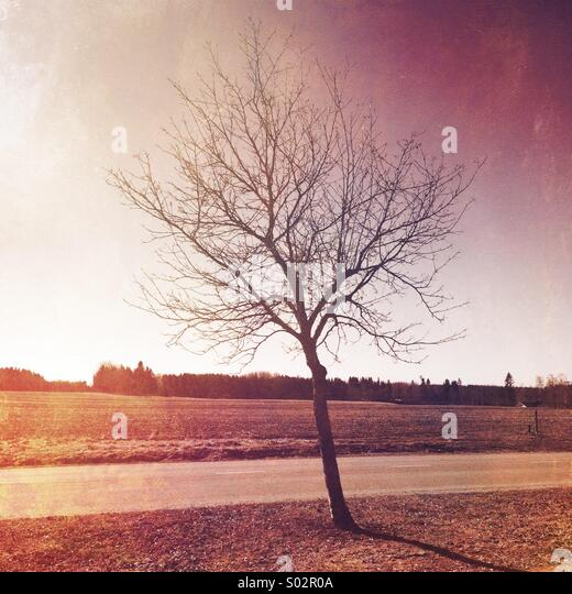 Textured landscape - Stock Image
