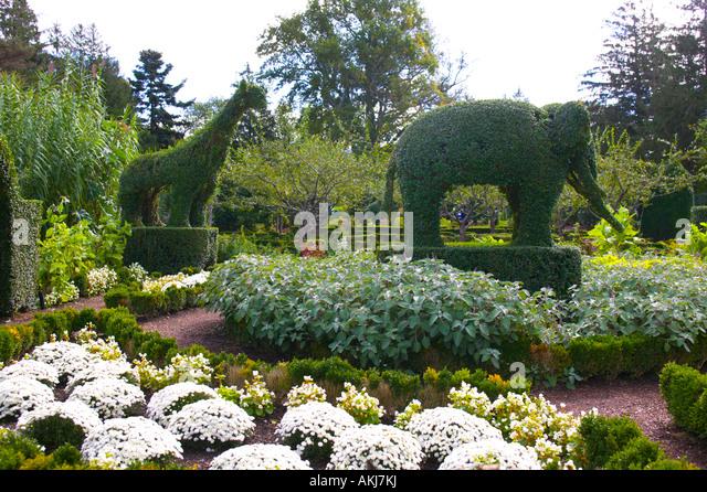 Rhode Island Topiary