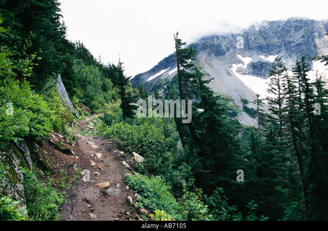 A portion of Cascade Pass trail in North Cascade National Park Washington COPYRIGHT DUANE BURLESON - Stock Image