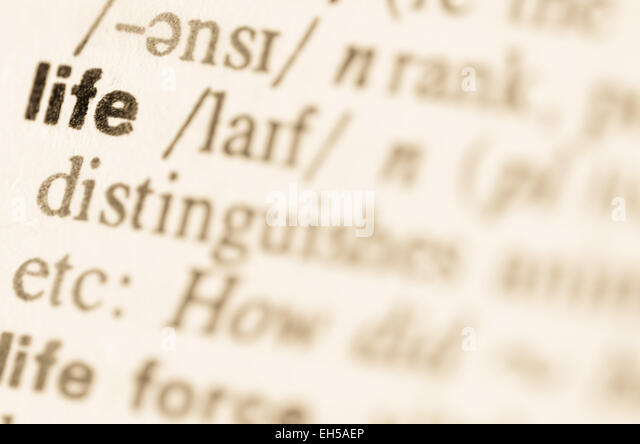 Definition of word life  in dictionary - Stock Image