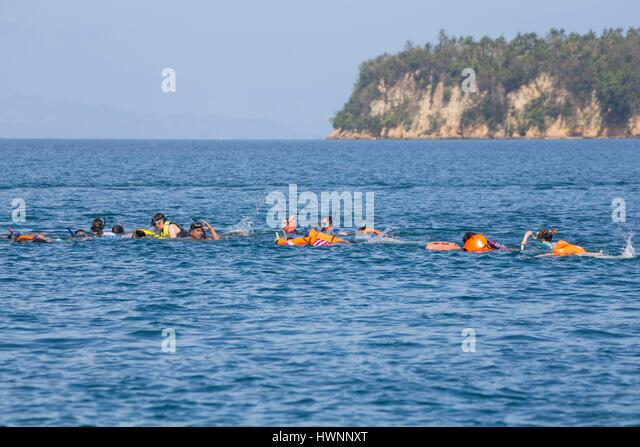 Philippines, Luzon, Sorsogon Province, Donsol, tourists swimming with whale shark (Rhincodon typus) - Stock-Bilder