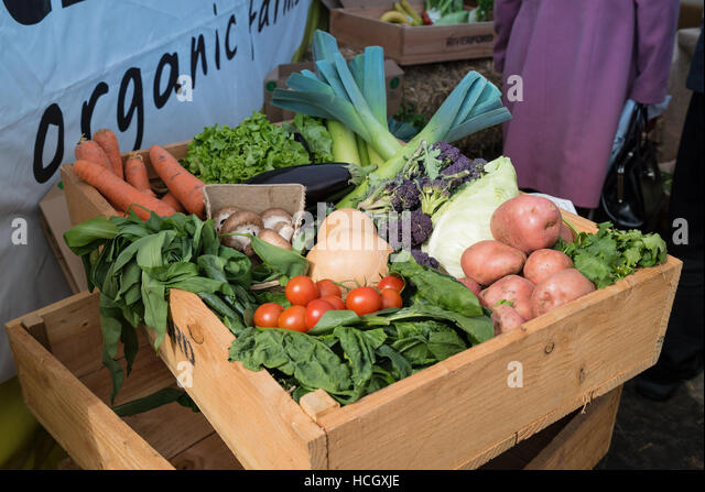 Organic vegetables on show at Chester Food Festival - Stock Image