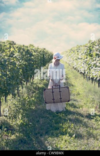 a woman in a white, Victorian dress in walking between vineyards - Stock-Bilder