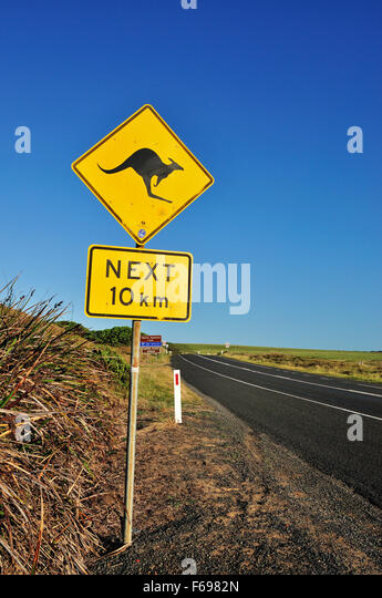 An iconic warning road sign for kangaroos near Great Ocean Road, Victoria, Australia. - Stock Image