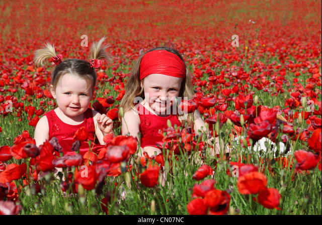happys summer girls in meadow - Stock Image