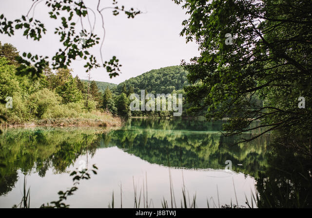 Beautiful lake in Plitvice, Croatia - Stock Image