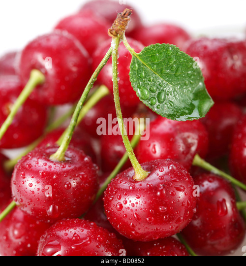 Cherries an object is on a white background - Stock Image