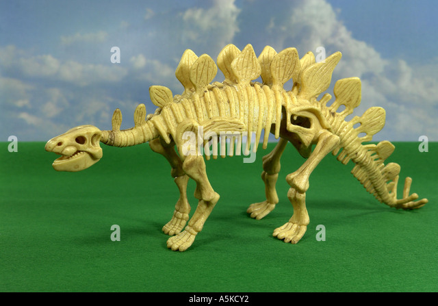 The Stegosaurus is called also plate lizard and in the jurassic period occurred. Its length amounted to approx. - Stock Image