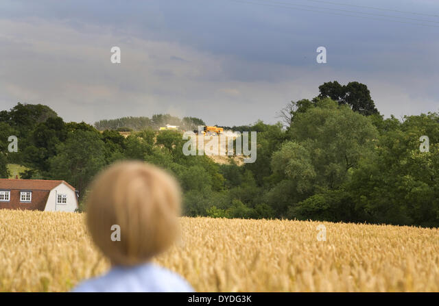 A small boy watches the combine  across a wheat field in August. - Stock Image