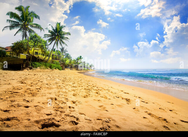 Sunlight over beautiful tropical beach near ocean - Stock Image