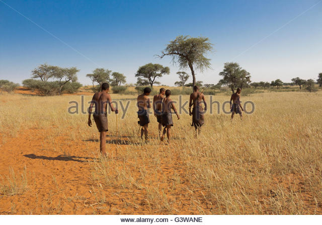 Bushmen of the Kalahari - Stock-Bilder