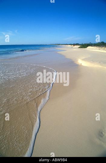Caribbean Island of Barbuda Deserted Beach - Stock Image
