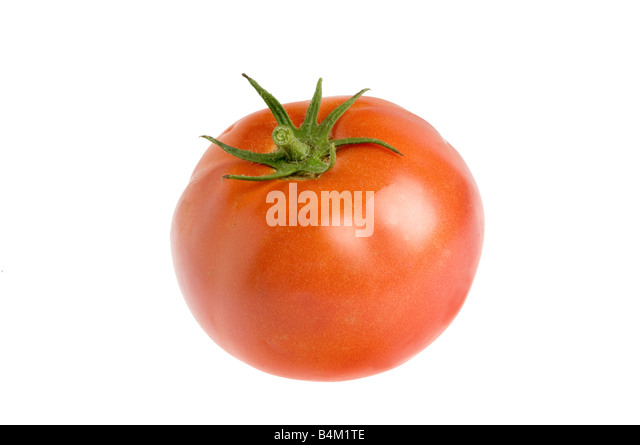 single organic fresh tomato - Stock Image