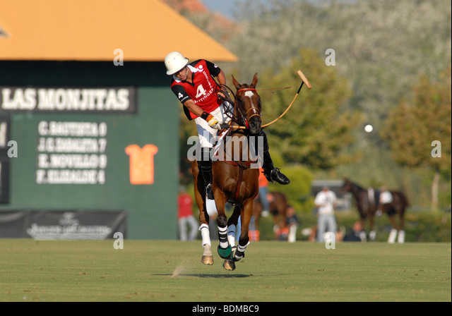 Polo player in action just after striking ball  during match at Santa Maria polo club, Sotogrande, Costa del Sol - Stock Image