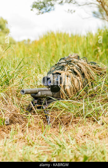 Police SWAT sniper in a ghillie suit looking through a rifle scope surrounded by dense vegetation during a police - Stock Image