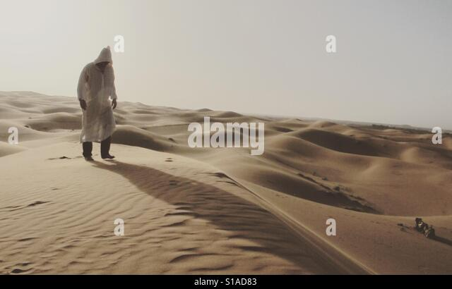 Wandering in the desert - Stock-Bilder