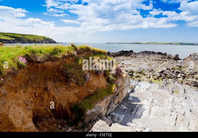 St Anns Seal Beach