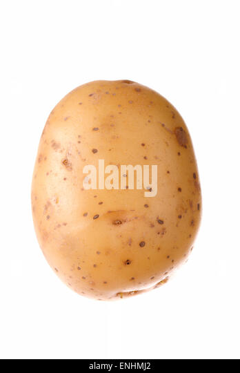 One raw potato on white background close up. - Stock Image