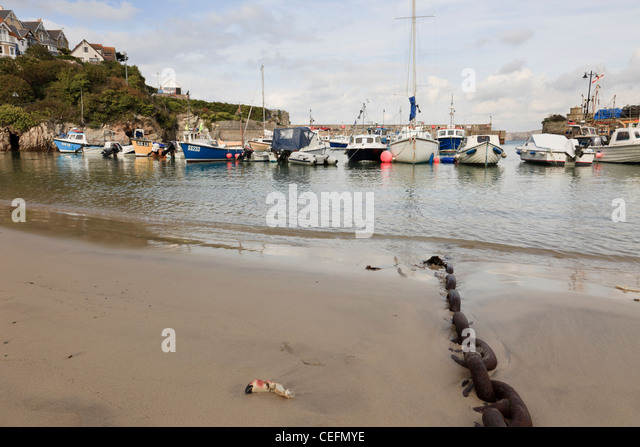 Newquay, Cornwall, England, UK. Chain on the beach and fishing boats moored in the harbour - Stock Image