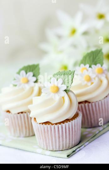 Daisy cupcakes - Stock Image