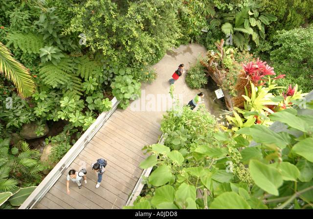 Cleveland Ohio University Circle Cleveland Botanical Garden tropical plants visitors - Stock Image