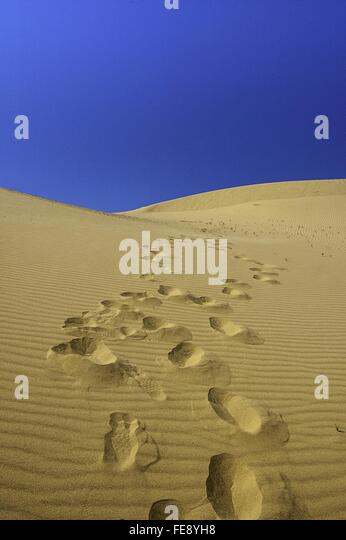 Footprints On Desert Against Clear Blue Sky - Stock Image