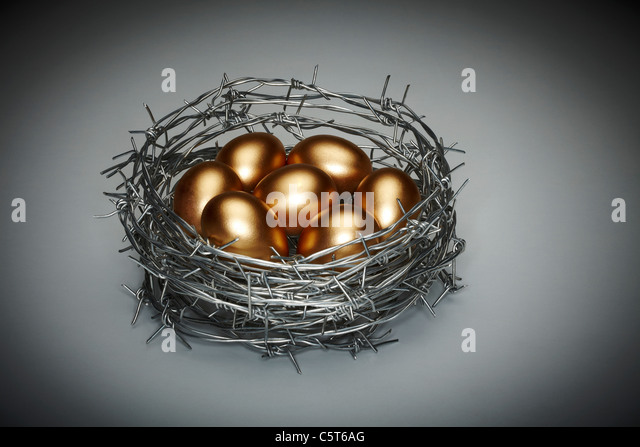 Nest Egg - Stock Image