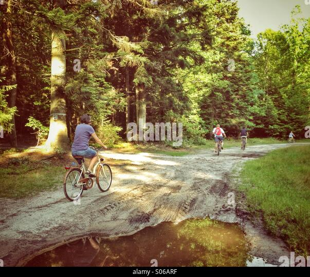 Riding bikes in the forest - Stock Image