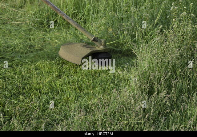 Weed trimmer stock photos weed trimmer stock images alamy for Sacramento bee fishing line