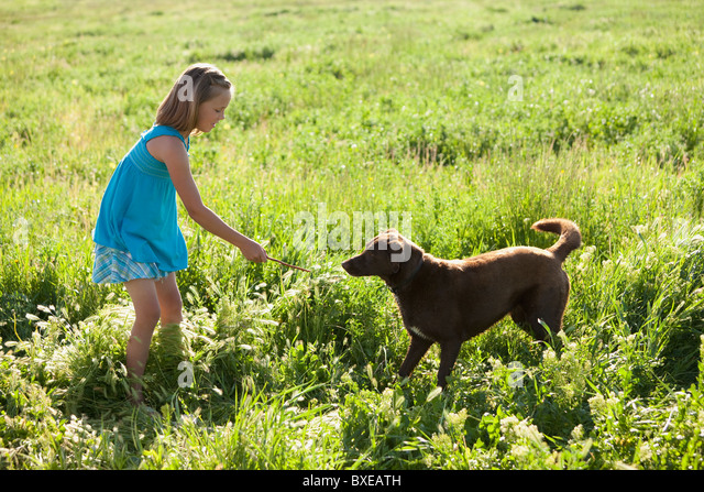 Girl Playing With Her Dog Stock Photos & Girl Playing With Her Dog ...