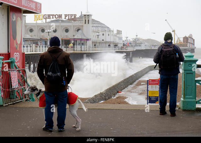 Brighton, UK. 8th February, 2016. With gusts up to 60mph, Storm Imogen hit Brighton and Hove on the South coast - Stock Image