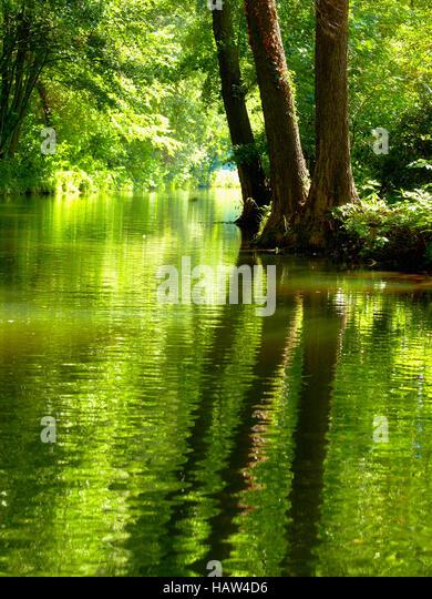 beautiful scenery from Spreewald - Stock Image