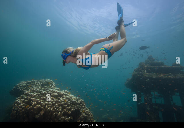Woman snorkeling and exploring a sunken temple and coral reef, Bali, Indonesia - Stock Image