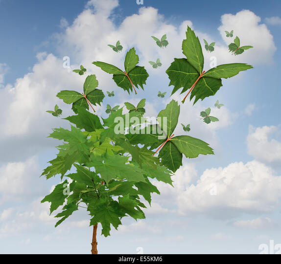 Nature freedom symbol as a growing tree with green leaves transforming into flying butterfly shapes as a metaphor - Stock Image