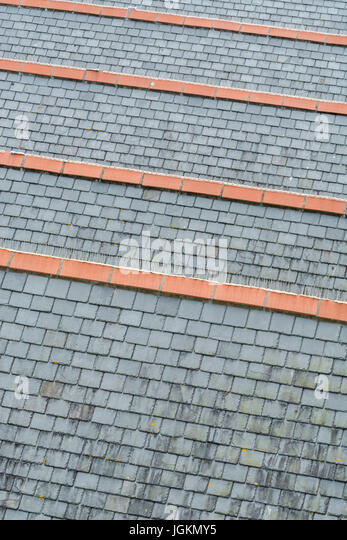 Series of connected rooftops, with gray slate and ceramic ridge tiles. Possible metaphor for getting on the housing - Stock Image