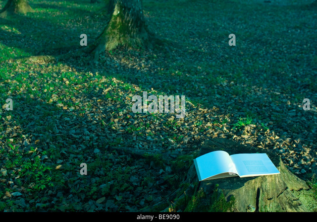 Open book lying on tree stump - Stock Image