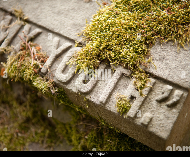 "Gravestone featuring the word ""Youth: covered in moss - Stock Image"